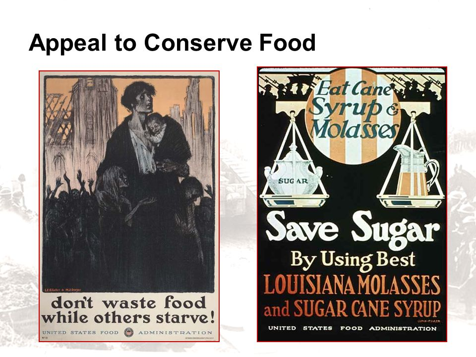 Appeal to Conserve Food