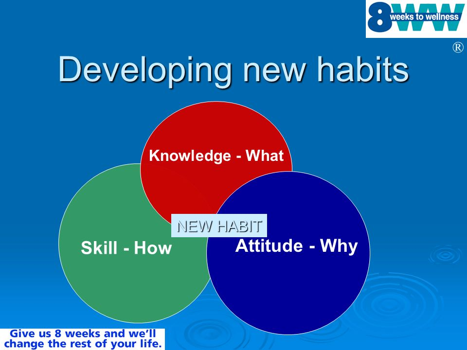 Developing new habits Skill - How Knowledge - What NEW HABIT