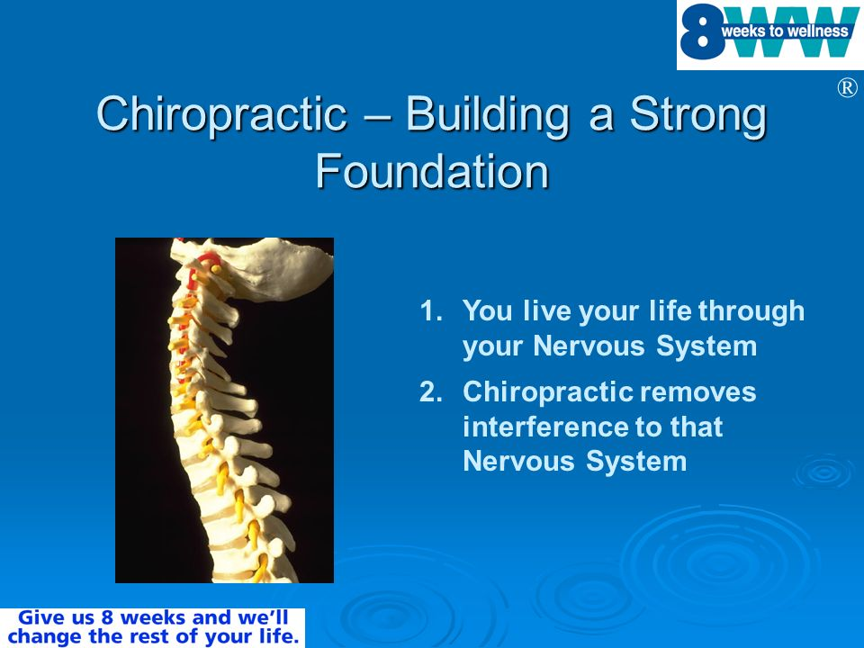 Chiropractic – Building a Strong Foundation