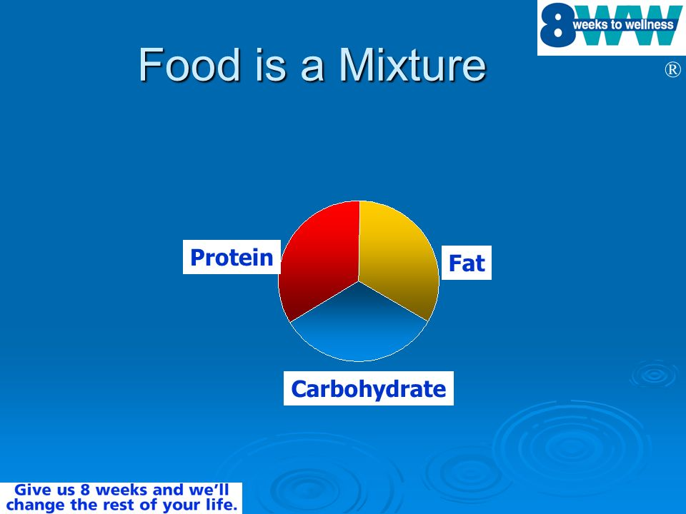 Food is a Mixture Protein Fat Carbohydrate