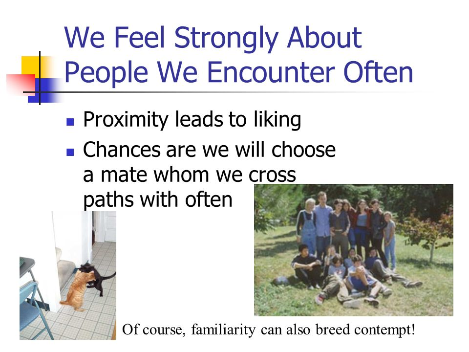 We Feel Strongly About People We Encounter Often