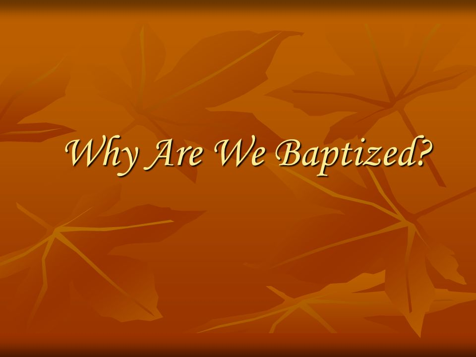 Why Are We Baptized