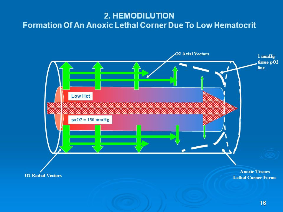 Formation Of An Anoxic Lethal Corner Due To Low Hematocrit