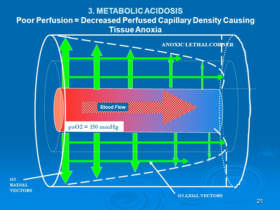 3. METABOLIC ACIDOSIS Poor Perfusion = Decreased Perfused Capillary Density Causing Tissue Anoxia. ANOXIC LETHAL CORNER.