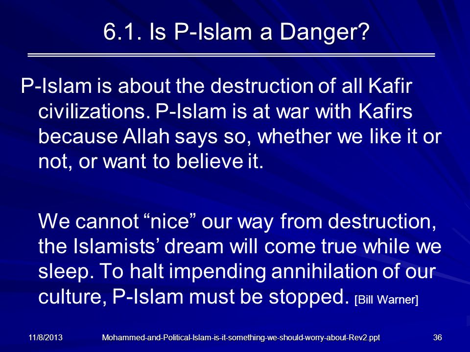 6.1. Is P-Islam a Danger