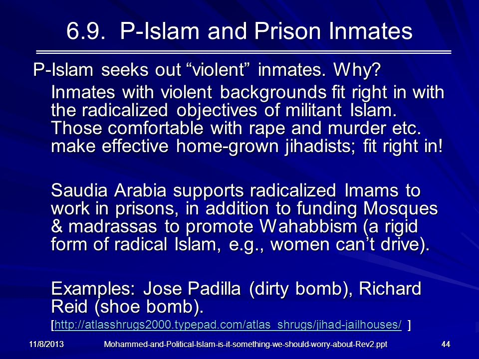 6.9. P-Islam and Prison Inmates