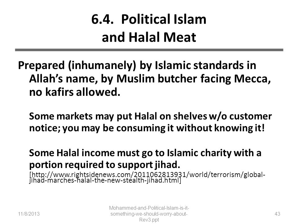6.4. Political Islam and Halal Meat
