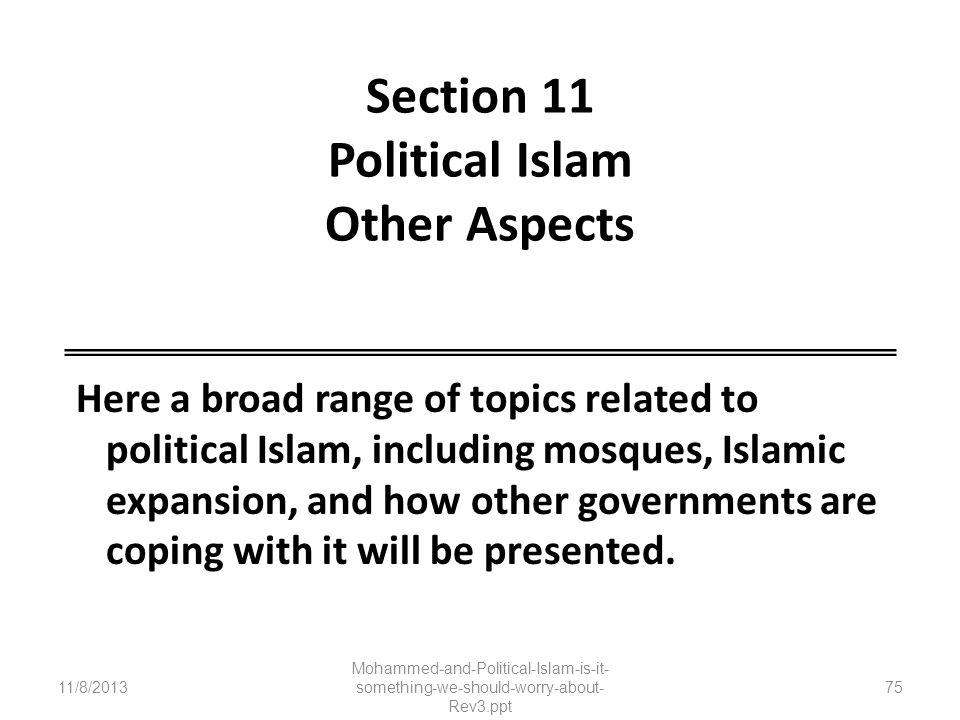 Section 11 Political Islam Other Aspects