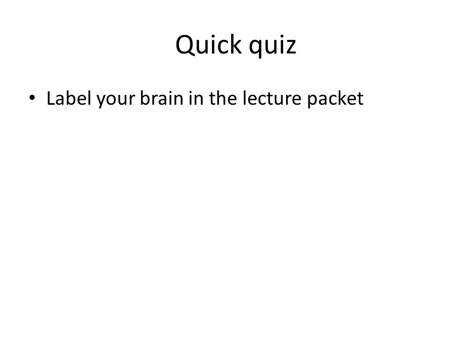 Quick quiz Label your brain in the lecture packet