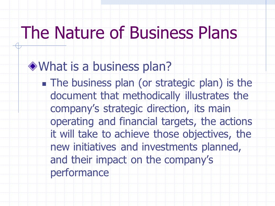 The Nature of Business Plans