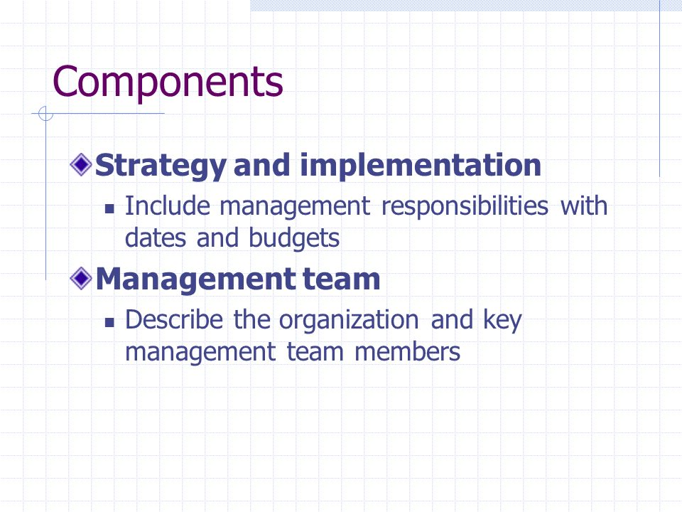Components Strategy and implementation Management team