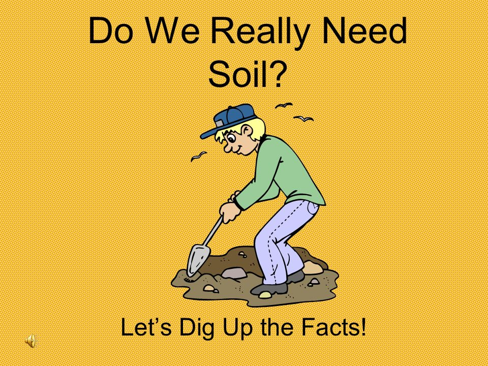 Do We Really Need Soil Let's Dig Up the Facts!