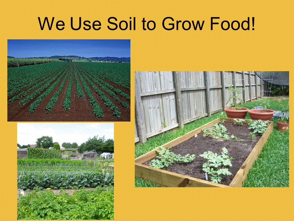 We Use Soil to Grow Food!