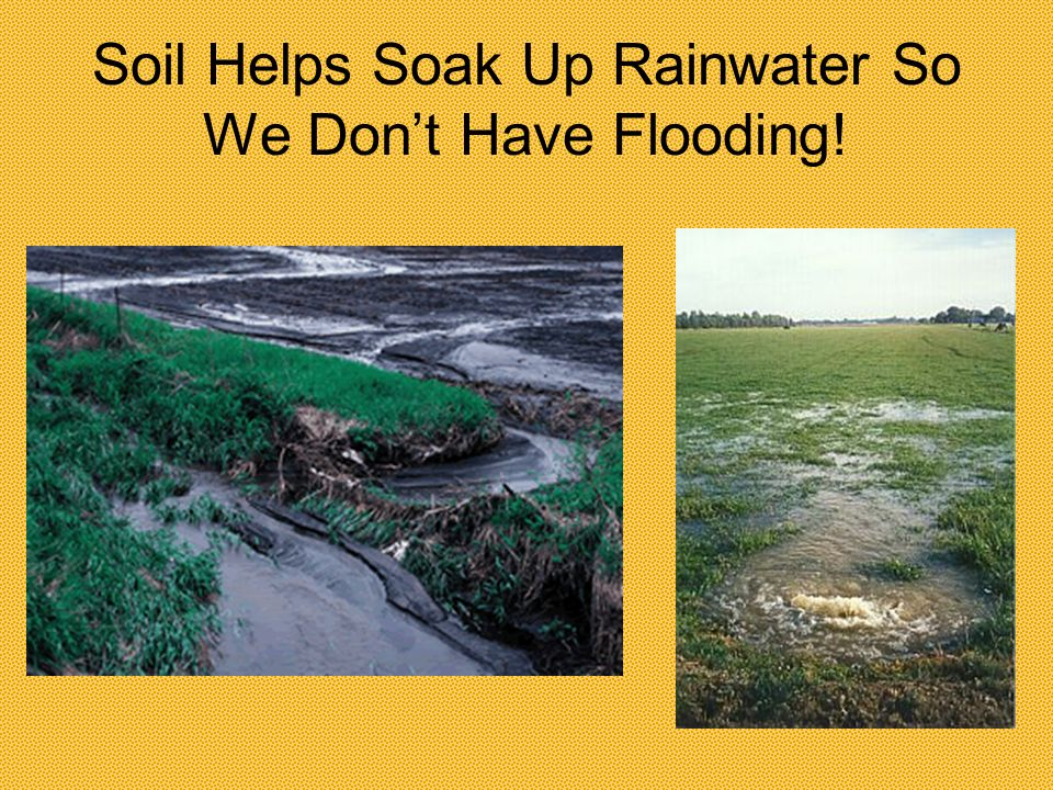 Soil Helps Soak Up Rainwater So We Don't Have Flooding!