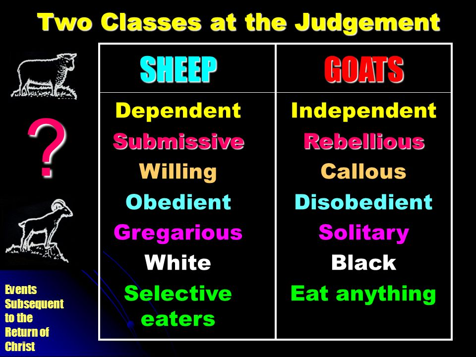 Two Classes at the Judgement