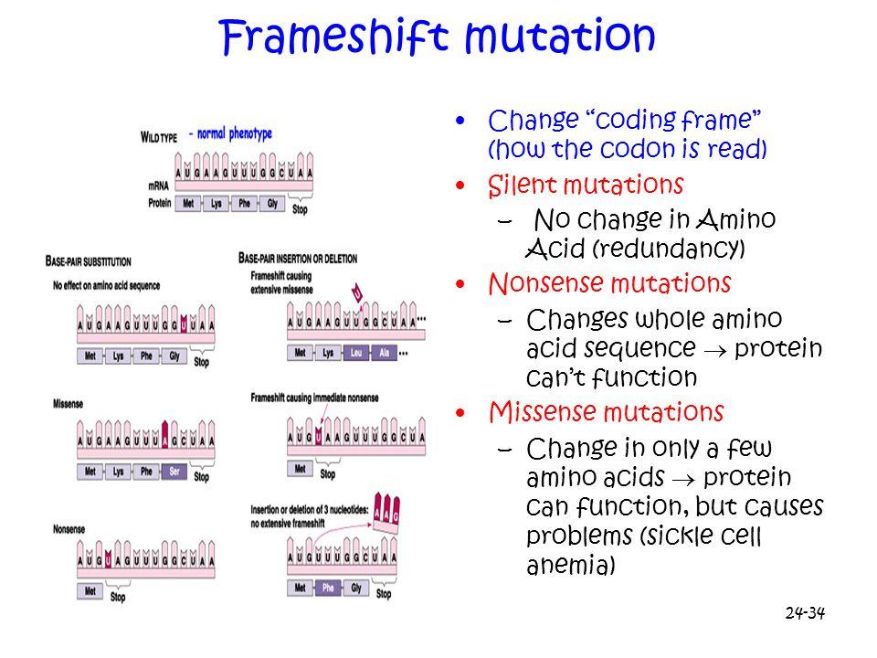 Contemporary Frame Shift Mutation Example Vignette - Framed Art ...