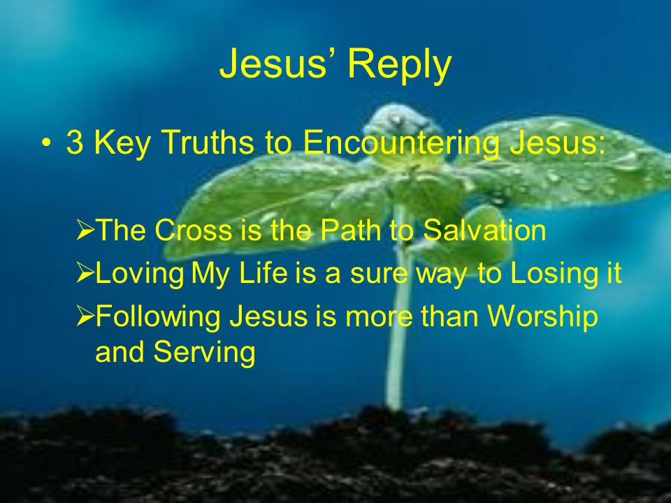Jesus' Reply 3 Key Truths to Encountering Jesus: