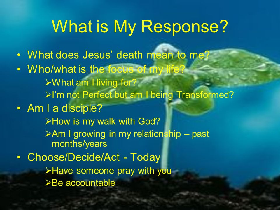 What is My Response What does Jesus' death mean to me