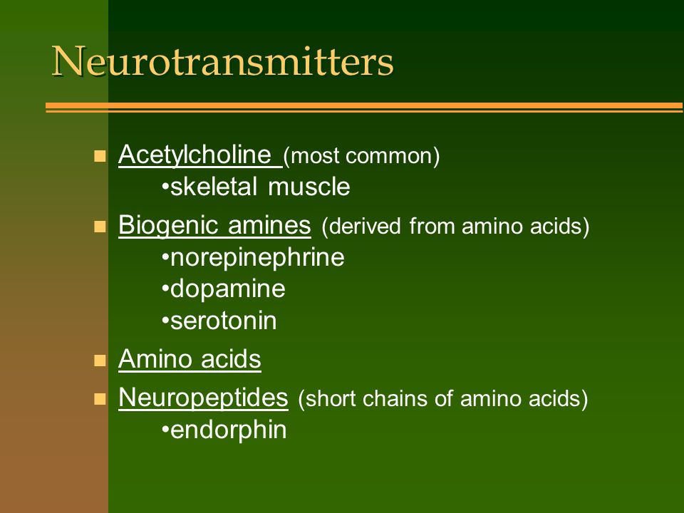 Neurotransmitters Acetylcholine (most common) •skeletal muscle