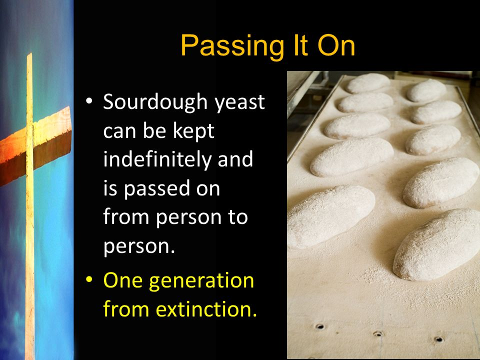 Passing It On Sourdough yeast can be kept indefinitely and is passed on from person to person.