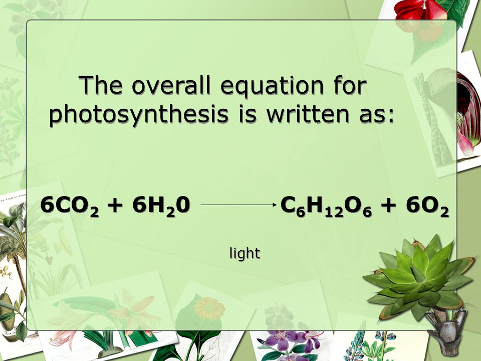 The overall equation for photosynthesis is written as: