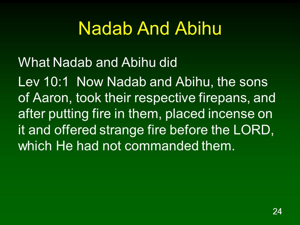 Nadab And Abihu What Nadab and Abihu did
