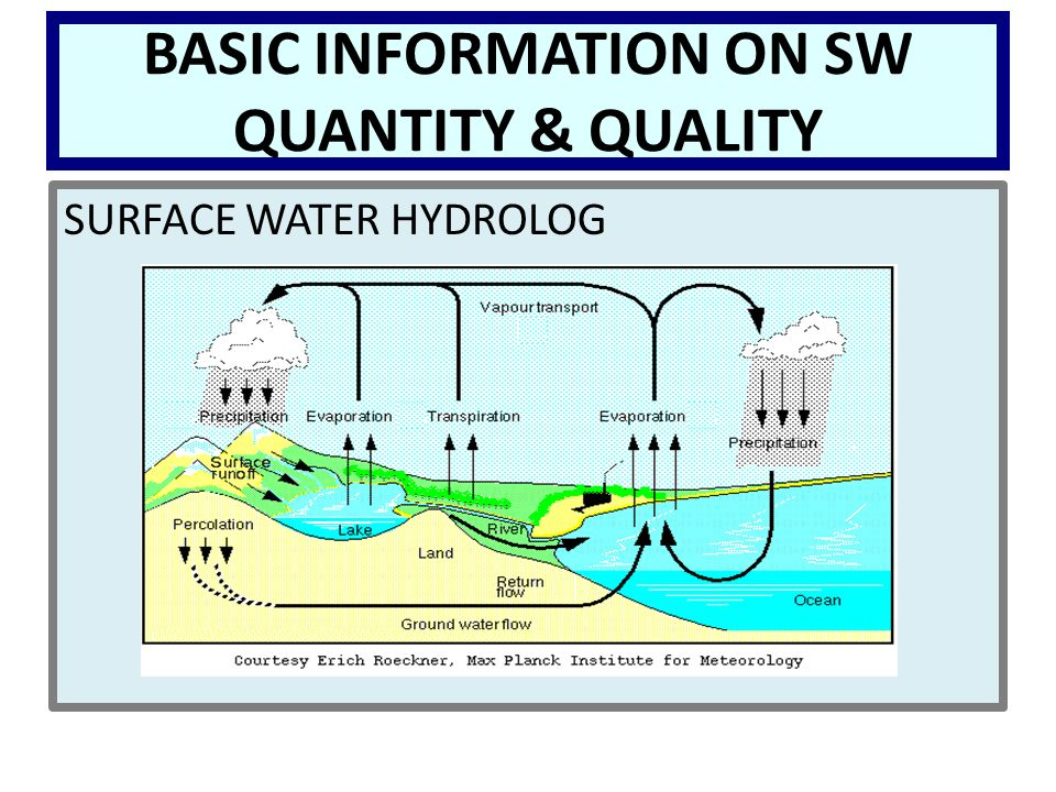 BASIC INFORMATION ON SW QUANTITY & QUALITY