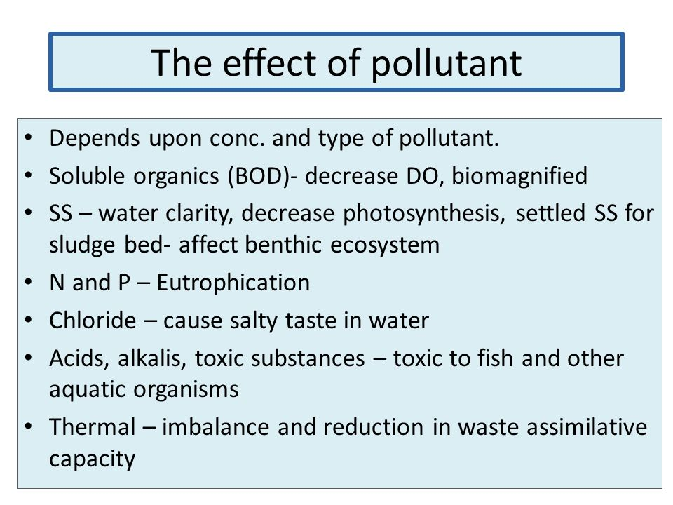 The effect of pollutant