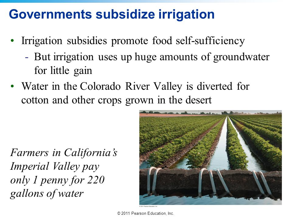 Governments subsidize irrigation