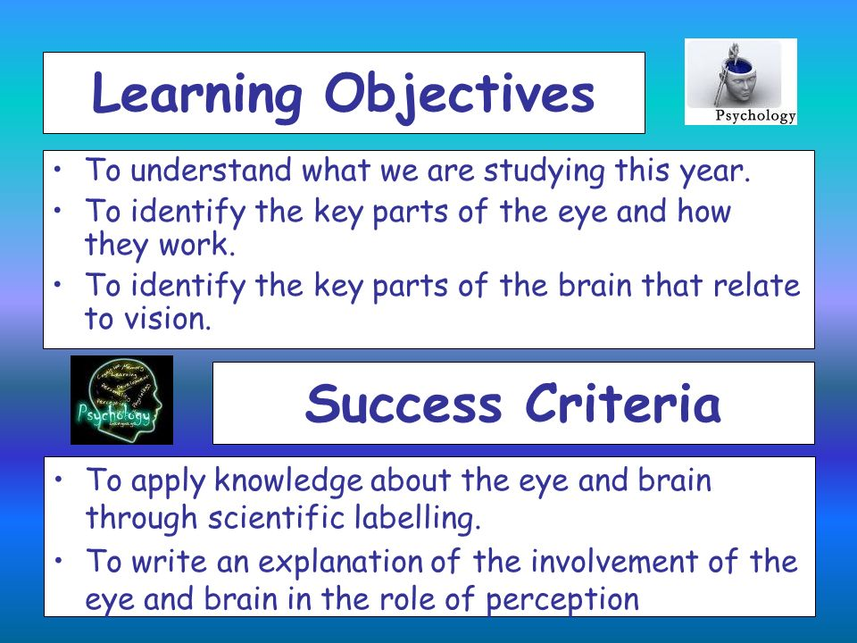 Learning Objectives Success Criteria