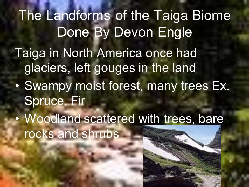 The Landforms of the Taiga Biome Done By Devon Engle