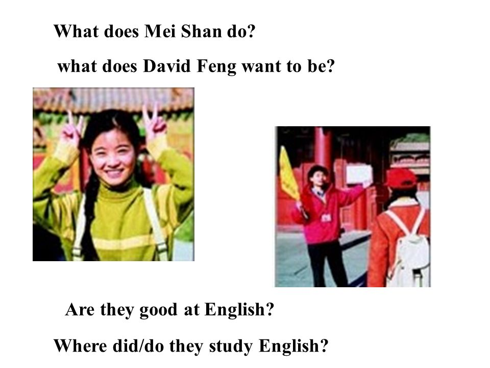 What does Mei Shan do. what does David Feng want to be.