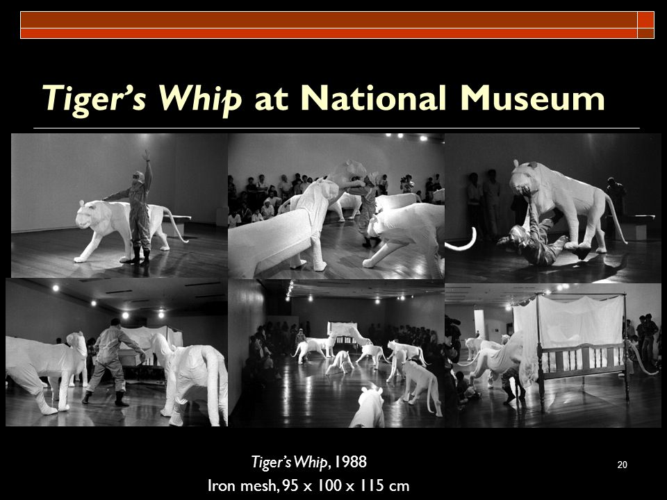 Tiger's Whip at National Museum