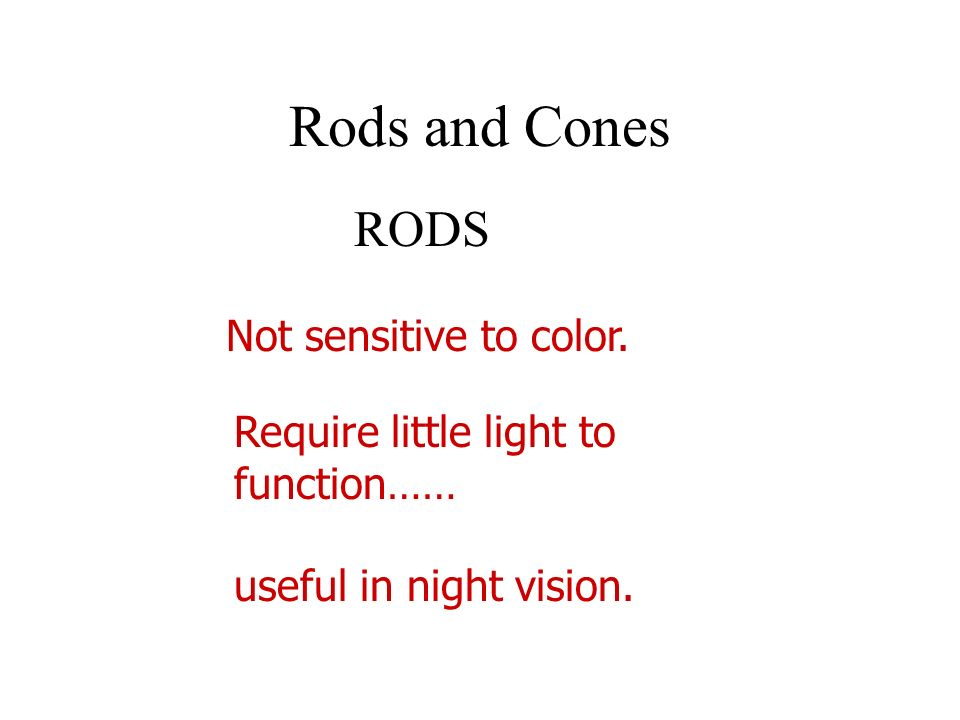 Rods and Cones RODS Not sensitive to color.