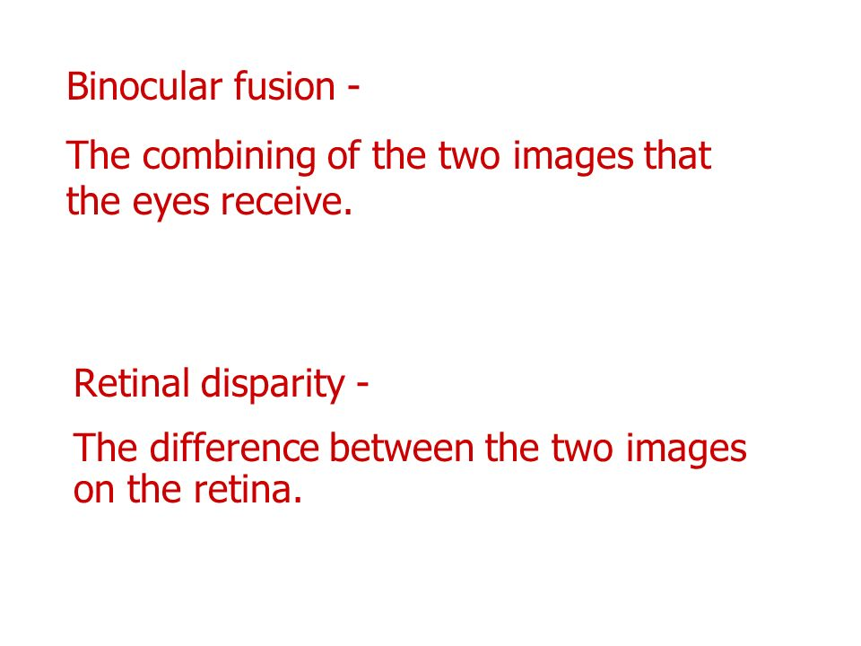 Binocular fusion - The combining of the two images that the eyes receive.