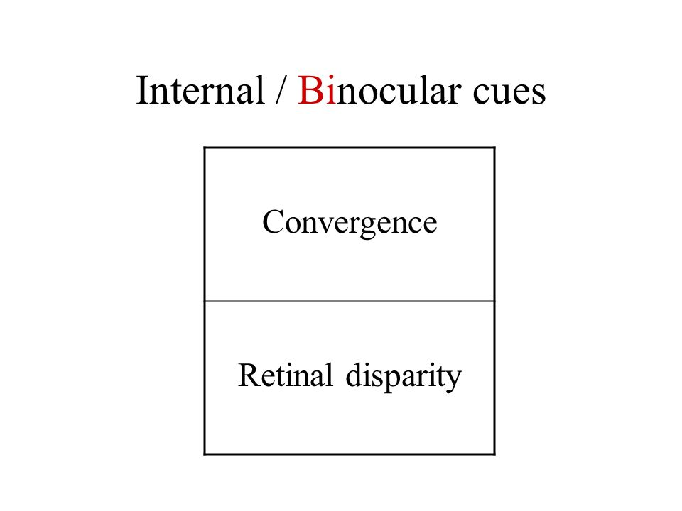 Internal / Binocular cues