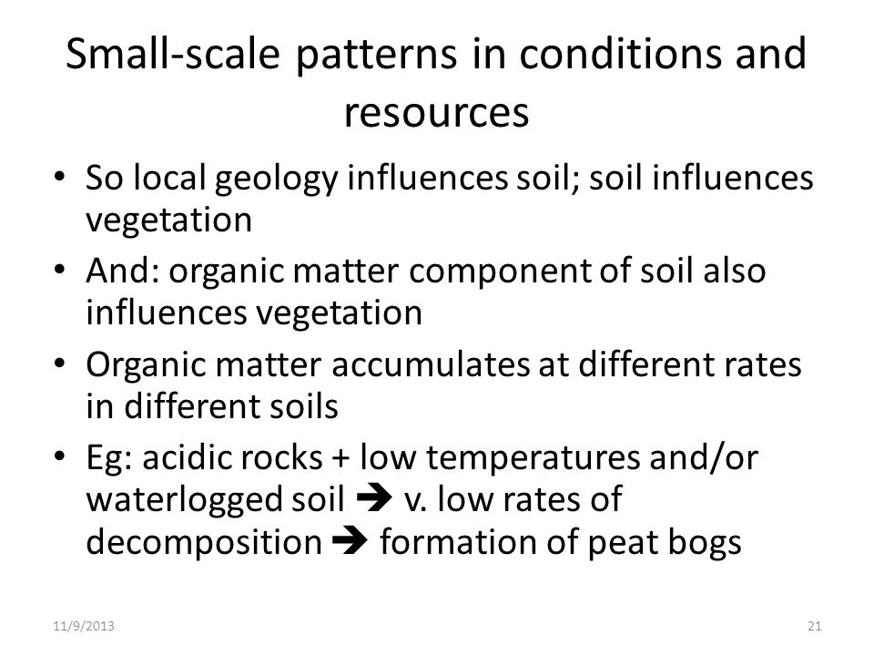 Small-scale patterns in conditions and resources