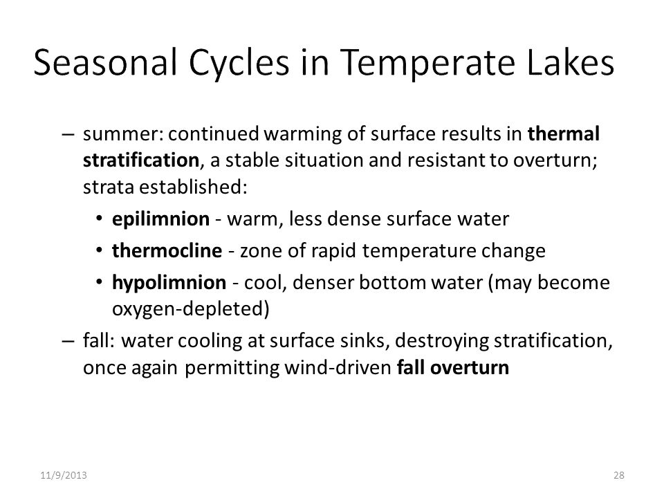 Seasonal Cycles in Temperate Lakes
