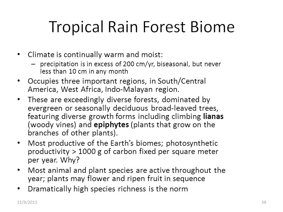 Tropical Rain Forest Biome
