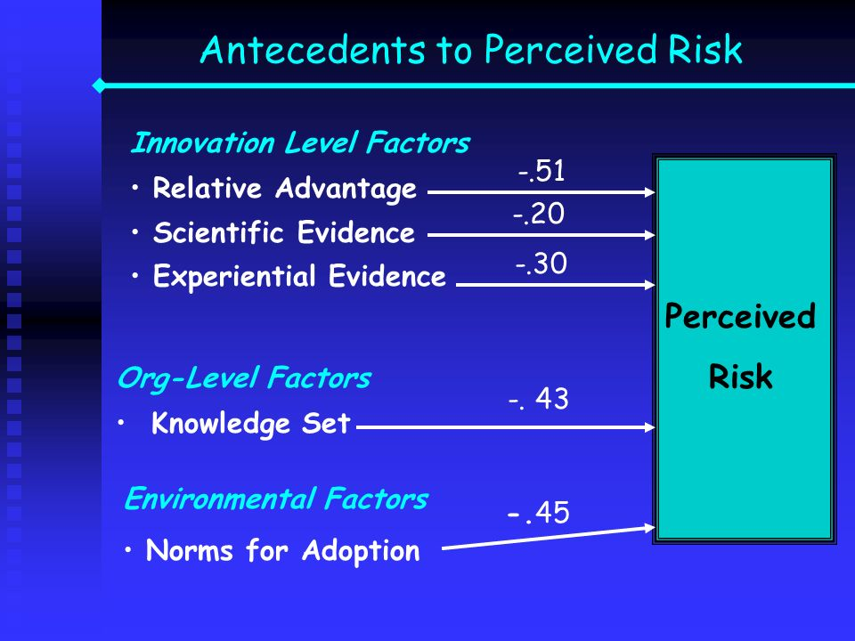 Antecedents to Perceived Risk