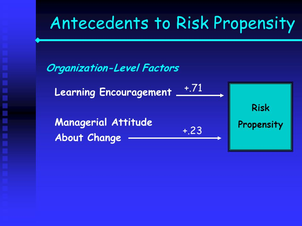 Antecedents to Risk Propensity