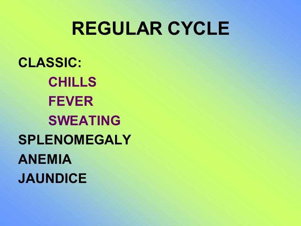 REGULAR CYCLE CLASSIC: CHILLS FEVER SWEATING SPLENOMEGALY ANEMIA