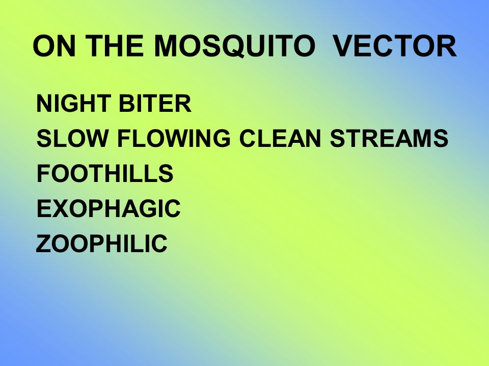 ON THE MOSQUITO VECTOR SLOW FLOWING CLEAN STREAMS FOOTHILLS EXOPHAGIC