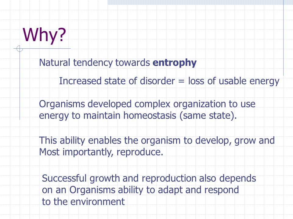 Why Natural tendency towards entrophy