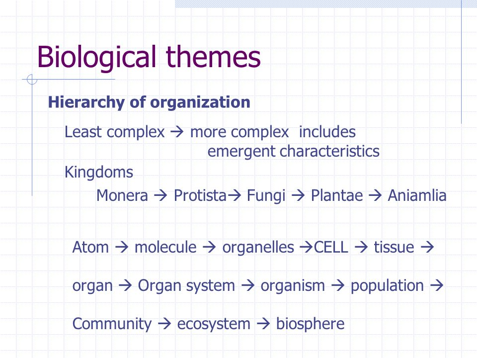 Biological themes Hierarchy of organization