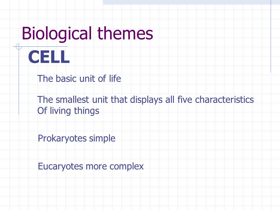 Biological themes CELL The basic unit of life