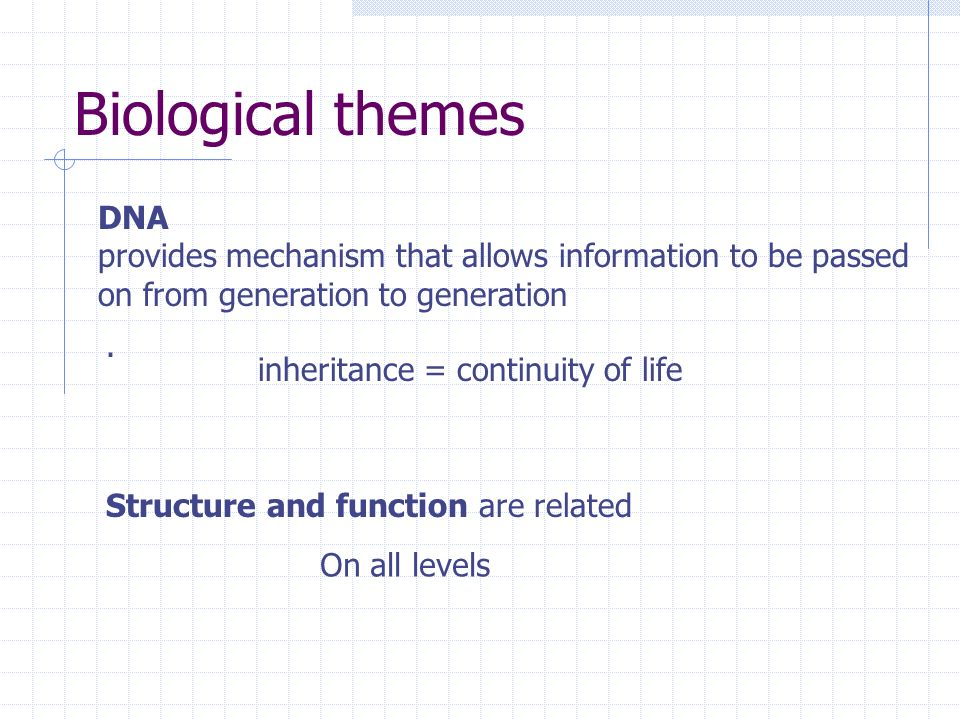 Biological themes DNA. provides mechanism that allows information to be passed. on from generation to generation.