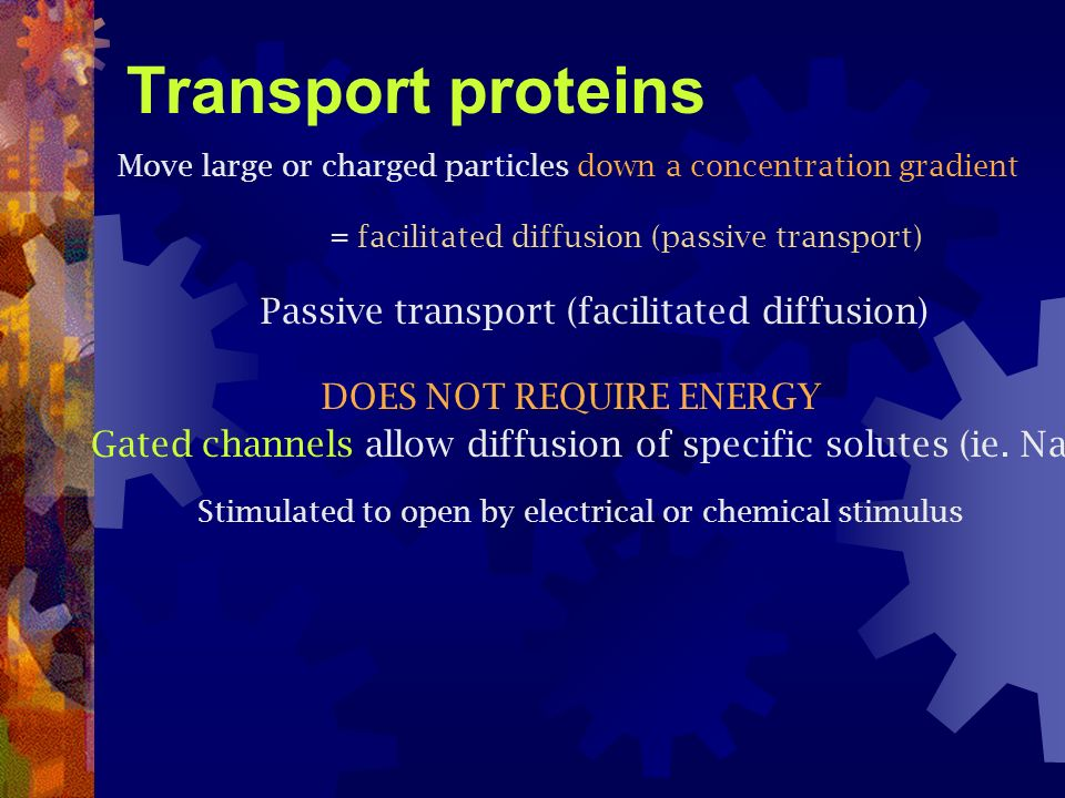 Transport proteins DOES NOT REQUIRE ENERGY