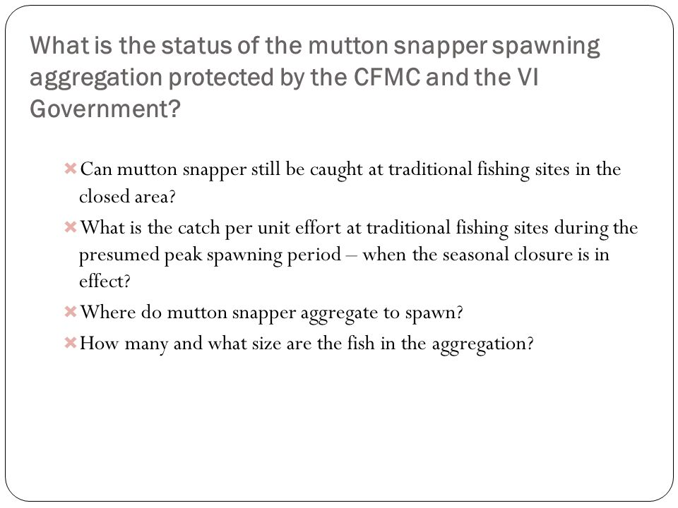 What is the status of the mutton snapper spawning aggregation protected by the CFMC and the VI Government