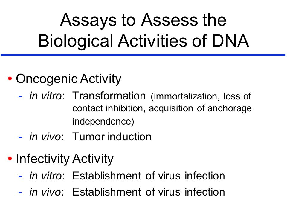 Assays to Assess the Biological Activities of DNA